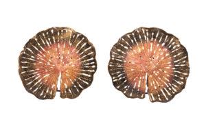 Lotuzz Bronze